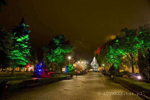 Świdnica - iluminacja parku